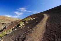 Teide, arenas negras