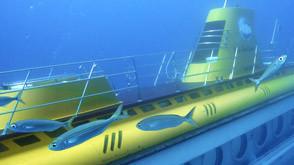 Submarine Safaris, Marina San Miguel